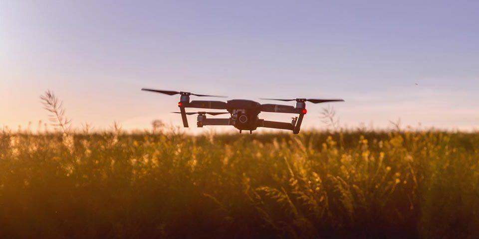 Il futuro dell'agricoltura nel 2030